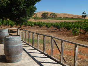 Cellar door at Charles Melton